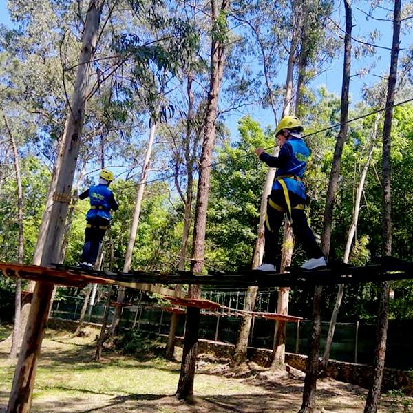 Rates Park 2021 Arborismo00006