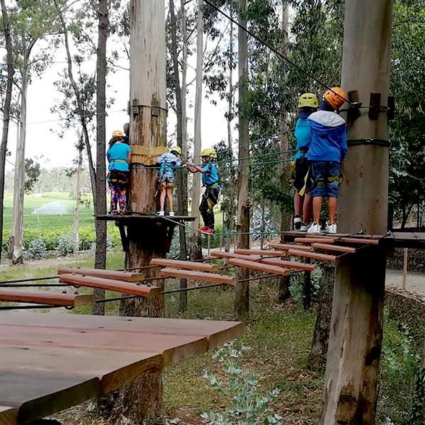 Rates Park 2021 Arborismo00011